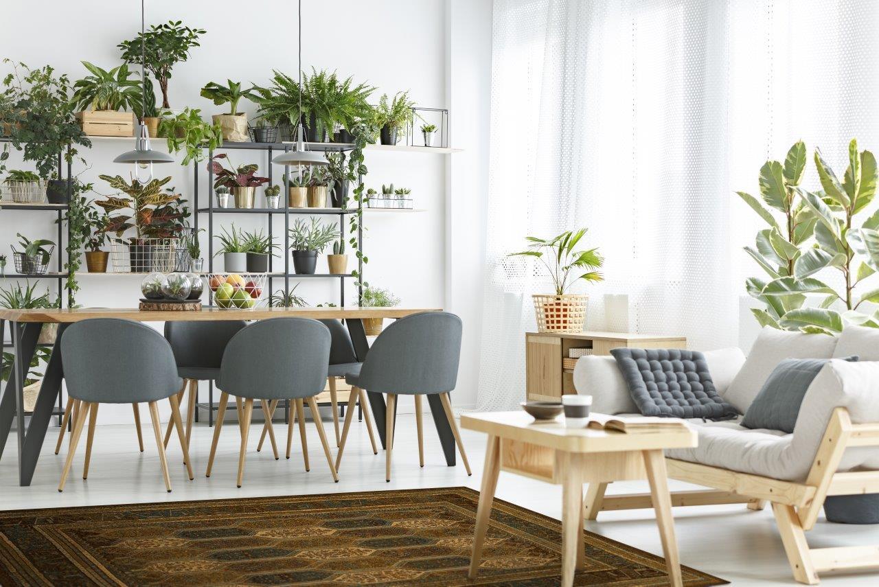 Dywilan – ceniony polski producent dywanów